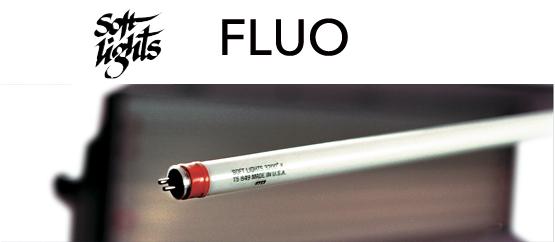 logos-fluo